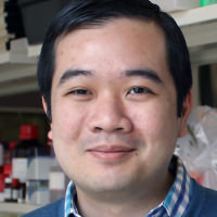 Freddy Nguyen, MD, PhD's avatar